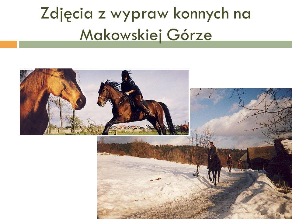 Zdjęcia z wypraw konnych na Makowskiej Górze