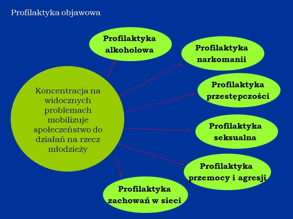 Profilaktyka narkomanii Koncentracja na widocznych problemach mobilizuje społeczeństwo do działań na rzecz młodzieży Profilaktyka przestępczości Profilaktyka alkoholowa Profilaktyka seksualna Profilaktyka przemocy i agresji Profilaktyka zachowań w sieci Profilaktyka objawowa