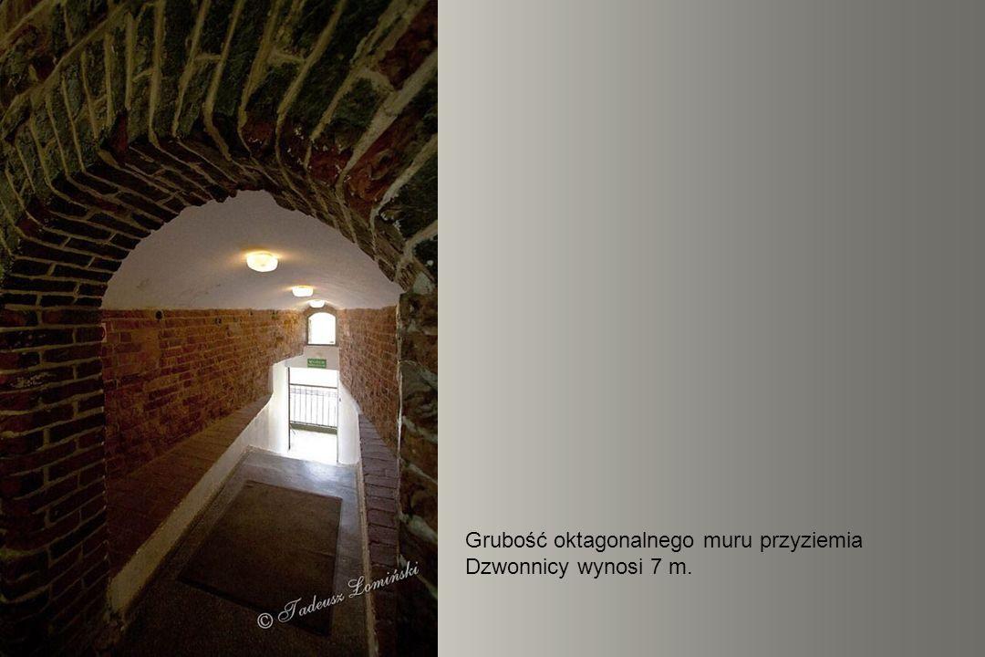 Planetarium w przyziemiu Wieży Radziejowskiego wyświetla na kopule o średnicy 8 m obrazy nieba widoczne z dowolnego miejsca na Ziemi, pory dnia i roku.