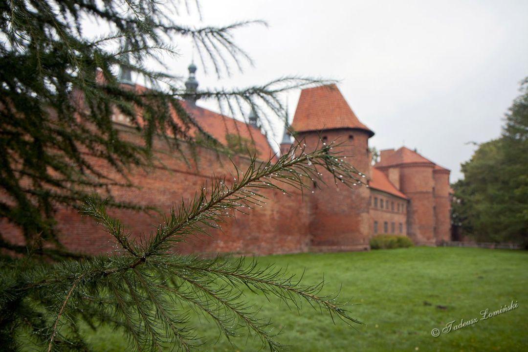 Dzwonnica-Wieża Radziejowskiego