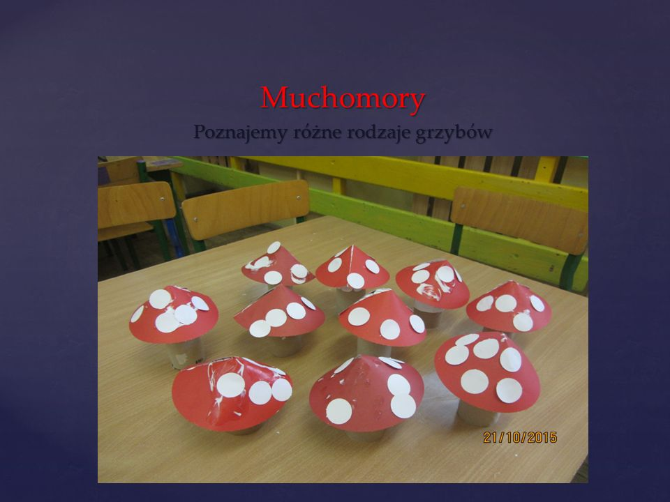 Muchomory Poznajemy różne rodzaje grzybów