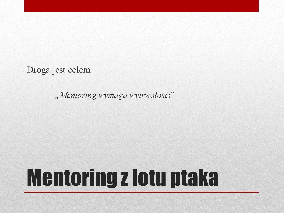 """Mentoring z lotu ptaka Droga jest celem """"Mentoring wymaga wytrwałości"""