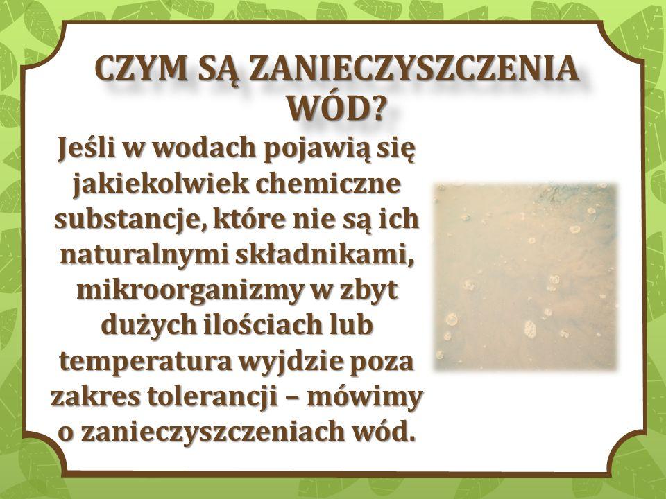 Zanieczyszczenia wód są również związane ze zjawiskiem eutrofizacji.
