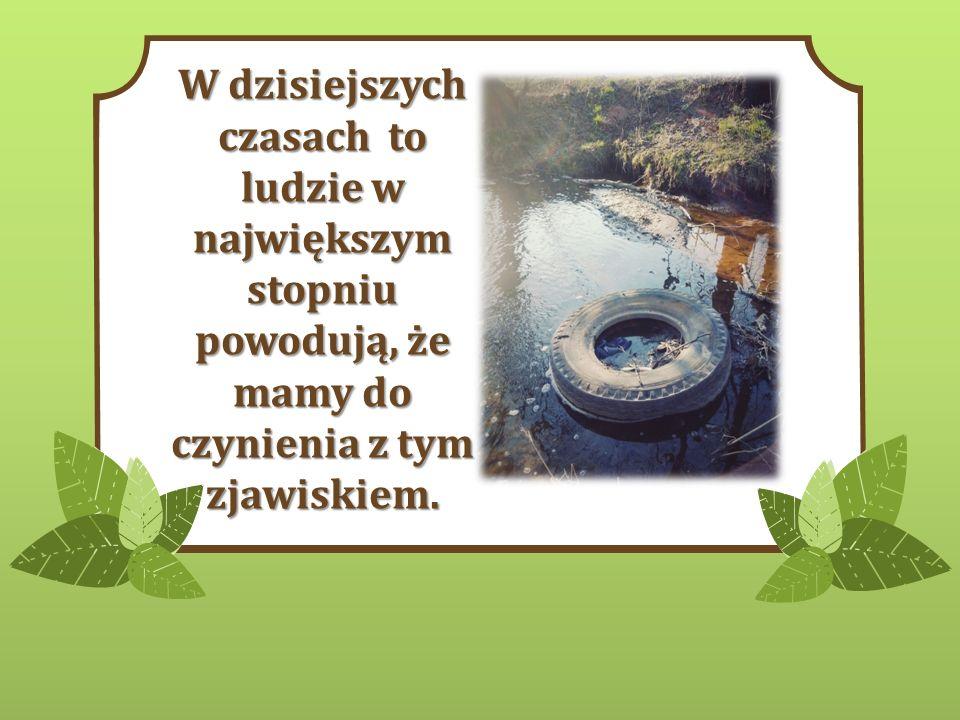 Ścieki komunalne i przemysłowe są odprowadzane do rzek i je zanieczyszczają detergentami, solami metali ciężkich oraz wieloma innymi.