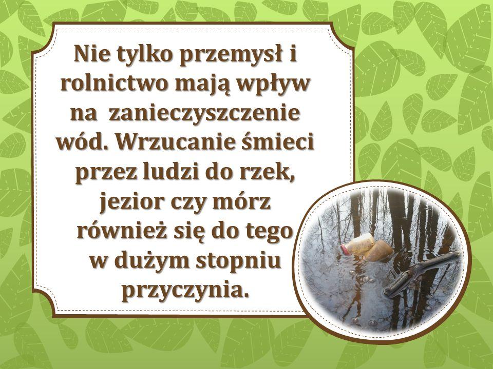 Koniec Przygotowała: Joanna Białogońska Źródła: Ekoproblemy.2ap.pl Wszystkie zdjęcia zawarte w prezentacji są mojego autorstwa i nie były nigdzie publikowane