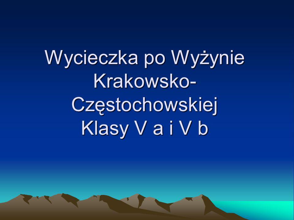 Wycieczka po Wyżynie Krakowsko- Częstochowskiej Klasy V a i V b