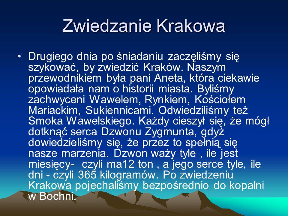 Zwiedzanie Krakowa Drugiego dnia po śniadaniu zaczęliśmy się szykować, by zwiedzić Kraków.