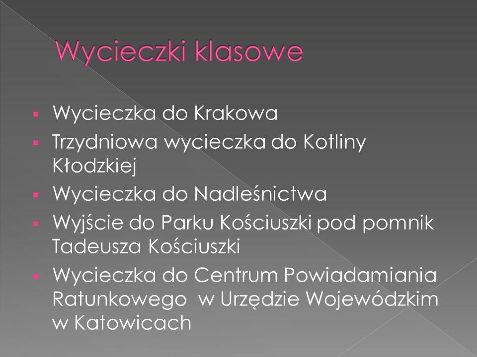  Wycieczka do Krakowa  Trzydniowa wycieczka do Kotliny Kłodzkiej  Wycieczka do Nadleśnictwa  Wyjście do Parku Kościuszki pod pomnik Tadeusza Kościuszki  Wycieczka do Centrum Powiadamiania Ratunkowego w Urzędzie Wojewódzkim w Katowicach