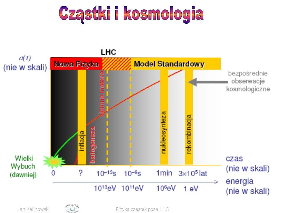 Jan KalinowskiFizyka cząstek poza LHC
