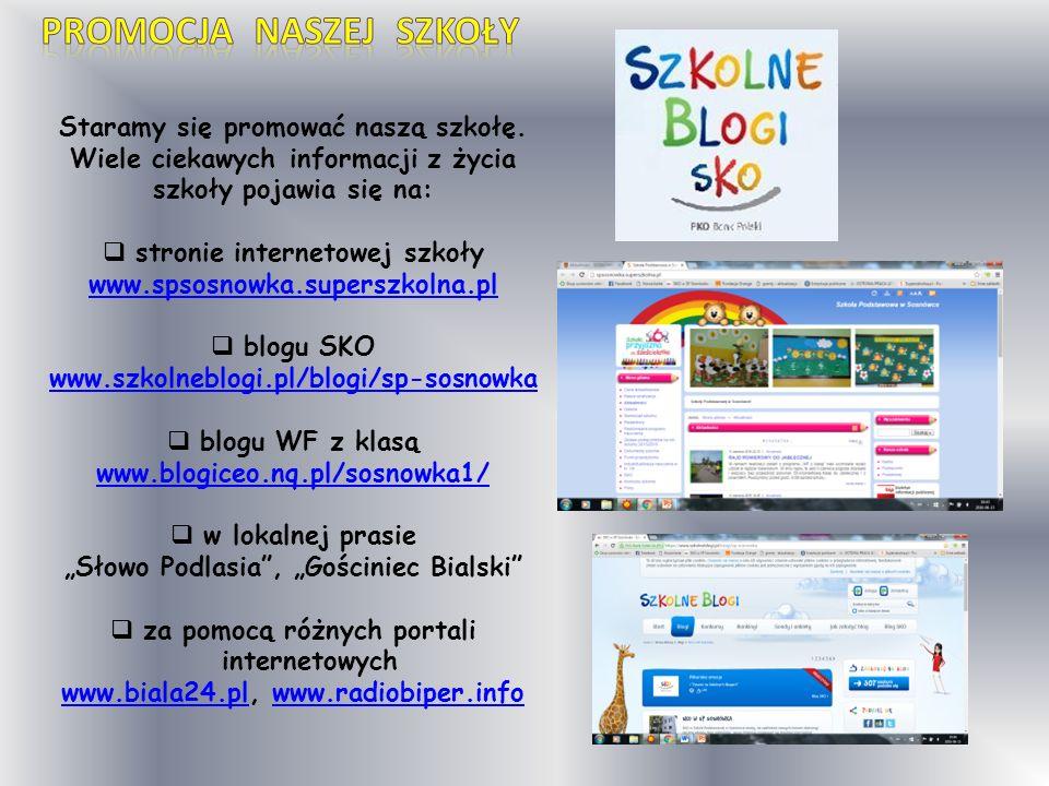 Staramy się promować naszą szkołę. Wiele ciekawych informacji z życia szkoły pojawia się na:  stronie internetowej szkoły www.spsosnowka.superszkolna