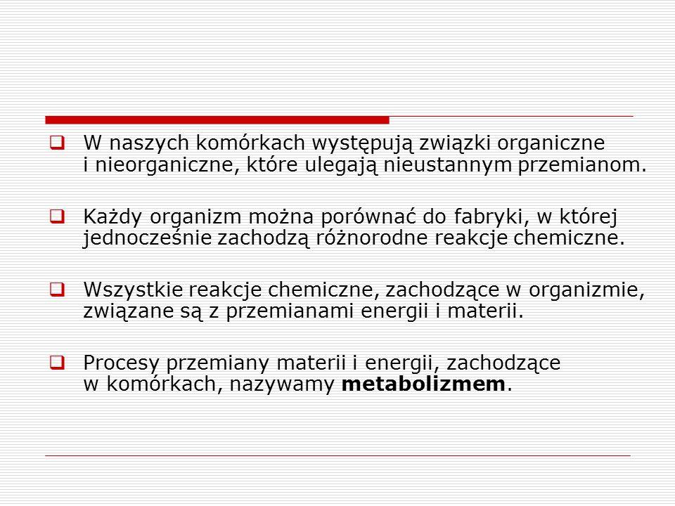 Zadania 1.Wyjaśnij, co to jest metabolizm.