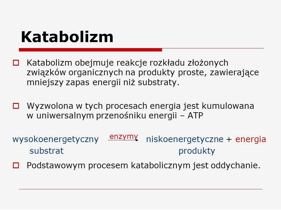 Katabolizm  Katabolizm obejmuje reakcje rozkładu złożonych związków organicznych na produkty proste, zawierające mniejszy zapas energii niż substraty