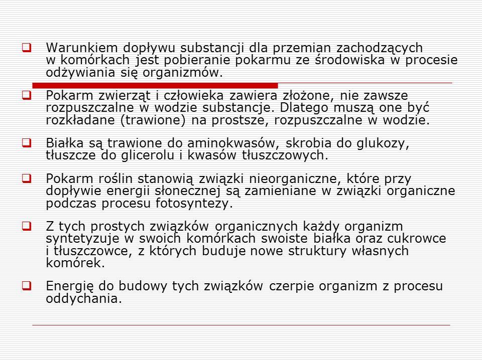 Źródła  W.Lewiński,J.Prokop, Biologia 1, Operon,2003  K.Stępczak, Biologia, WSiP, 1993  B.Gulewicz, Biologia, ABC, 1998
