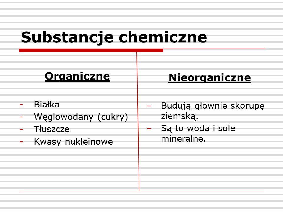 Substancje chemiczne Organiczne -Białka -Węglowodany (cukry) -Tłuszcze -Kwasy nukleinowe Nieorganiczne –Budują głównie skorupę ziemską. –Są to woda i
