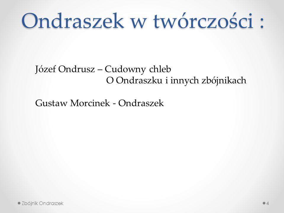 Szlak zbójnika Ondraszka 5Zbójnik Ondraszek W każdym z dziesięciu punktów ustawiane są specjalne dwujęzyczne tablice z opisem danego miejsca, historią Ondraszka, mapą zbójnickich ścieżek, okolicznymi ciekawostkami oraz zbójnickim zadaniem dla turystów.