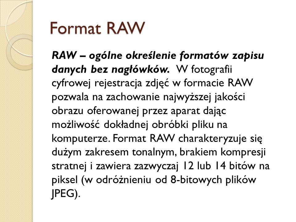 Format RAW RAW – ogólne określenie formatów zapisu danych bez nagłówków.