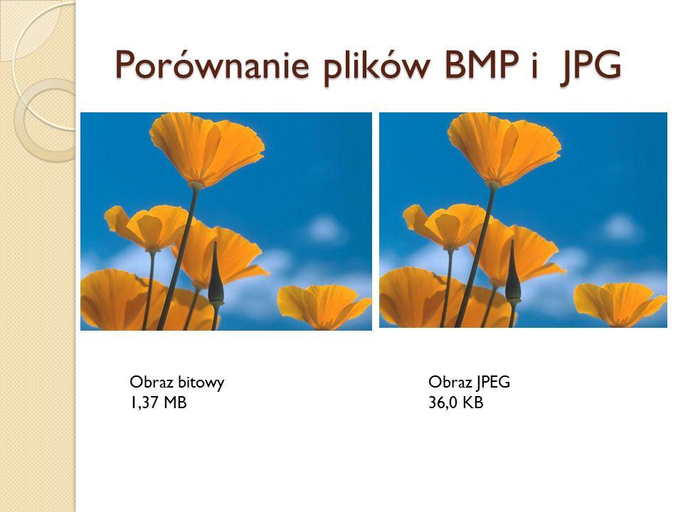 Porównanie plików BMP i JPG Obraz bitowy 1,37 MB Obraz JPEG 36,0 KB