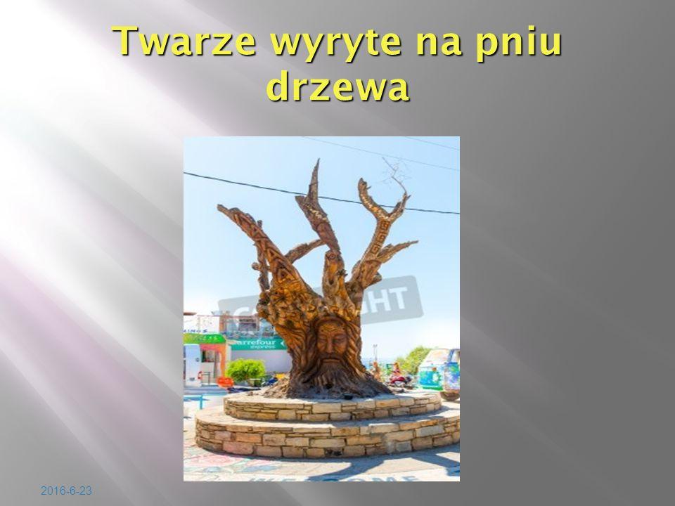2016-6-23 Twarze wyryte na pniu drzewa