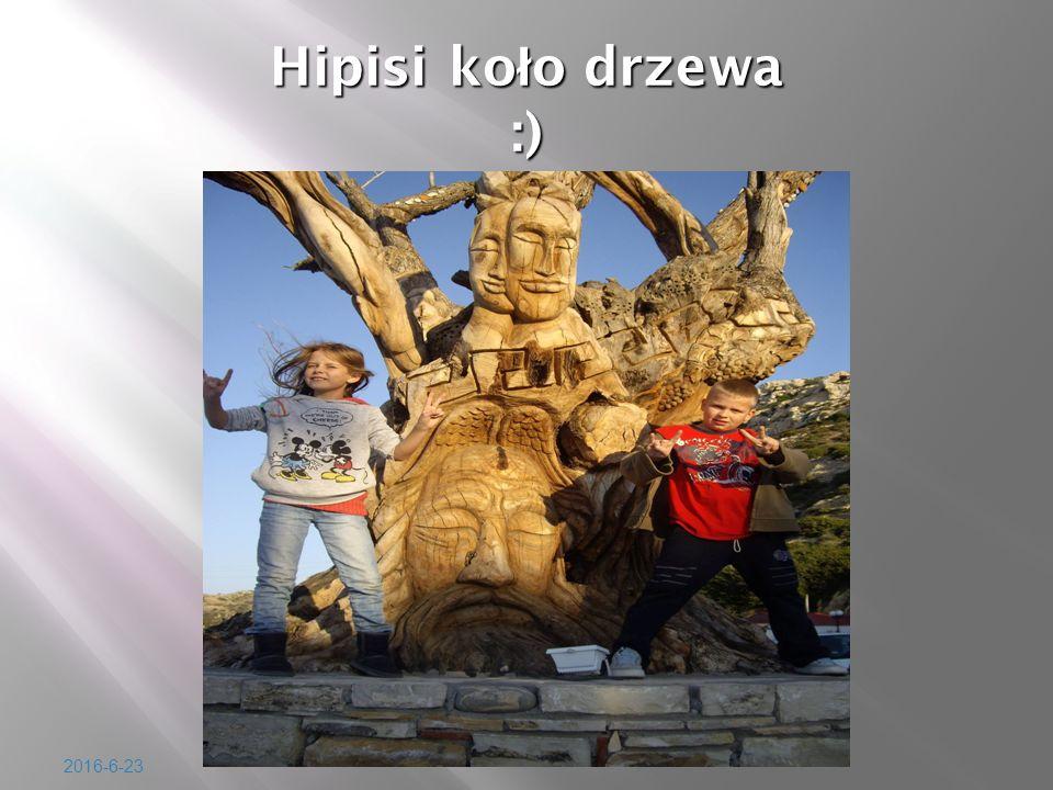 2016-6-23 Hipisi ko ł o drzewa :)