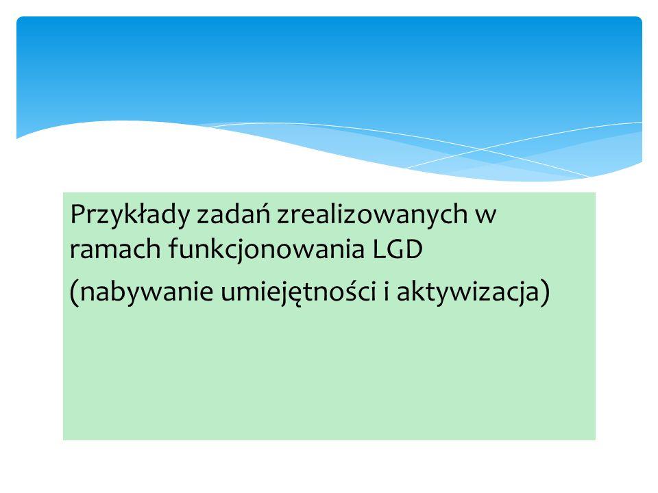 Przykłady zadań zrealizowanych w ramach funkcjonowania LGD (nabywanie umiejętności i aktywizacja)