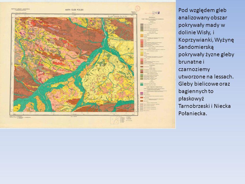 Pod względem gleb analizowany obszar pokrywały mady w dolinie Wisły, i Koprzywianki, Wyżynę Sandomierską pokrywały żyzne gleby brunatne i czarnoziemy