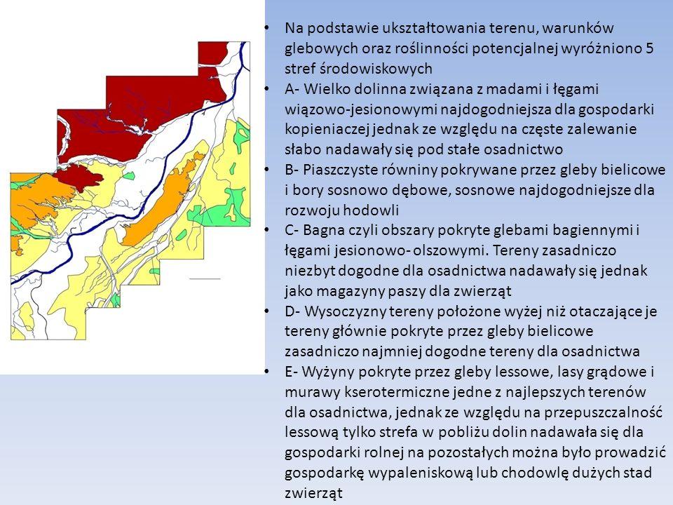 Na podstawie ukształtowania terenu, warunków glebowych oraz roślinności potencjalnej wyróżniono 5 stref środowiskowych A- Wielko dolinna związana z madami i łęgami wiązowo-jesionowymi najdogodniejsza dla gospodarki kopieniaczej jednak ze względu na częste zalewanie słabo nadawały się pod stałe osadnictwo B- Piaszczyste równiny pokrywane przez gleby bielicowe i bory sosnowo dębowe, sosnowe najdogodniejsze dla rozwoju hodowli C- Bagna czyli obszary pokryte glebami bagiennymi i łęgami jesionowo- olszowymi.