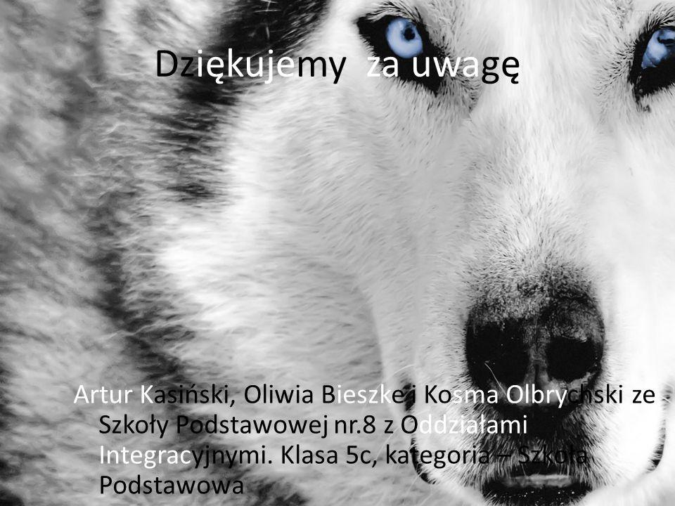 Dziękujemy za uwagę Artur Kasiński, Oliwia Bieszke i Kosma Olbrychski ze Szkoły Podstawowej nr.8 z Oddziałami Integracyjnymi.