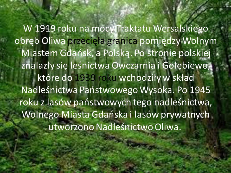Tak wygląda mapa nadleśnictwa Gdańskiego.