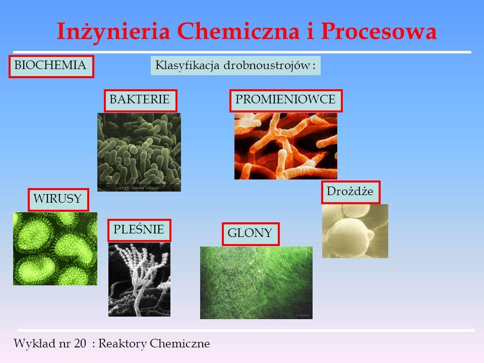 Inżynieria Chemiczna i Procesowa Wykład nr 20 : Reaktory Chemiczne BIOCHEMIA Klasyfikacja drobnoustrojów : WIRUSY BAKTERIEPROMIENIOWCE Drożdże PLEŚNIE