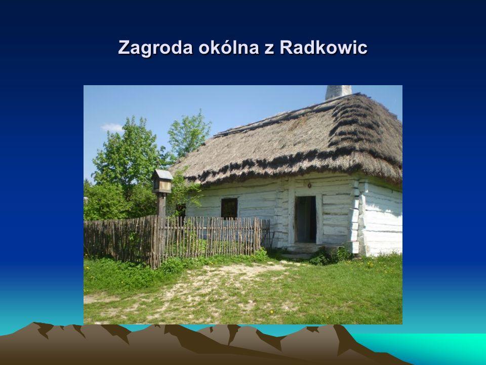 Zagroda okólna z Radkowic
