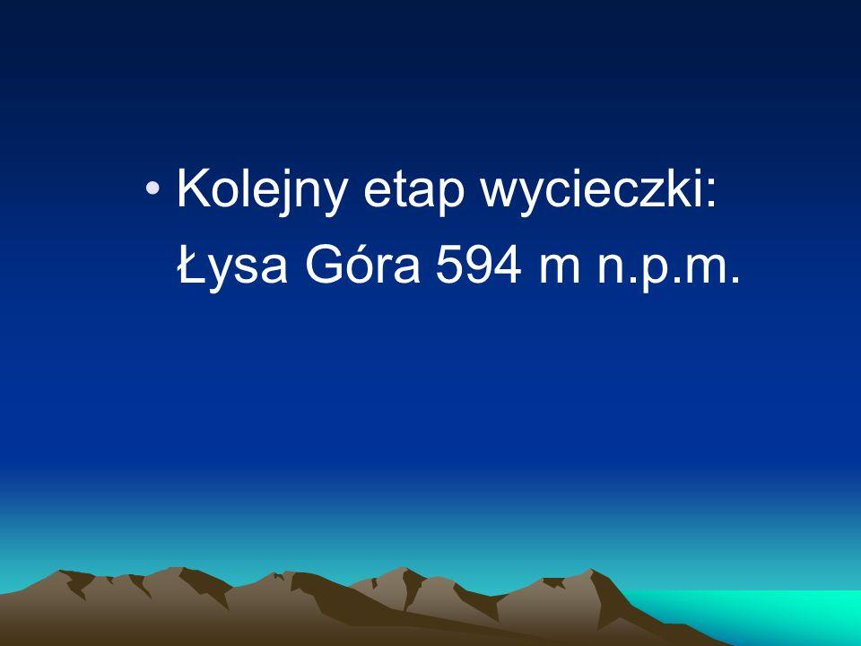 Kolejny etap wycieczki: Łysa Góra 594 m n.p.m.