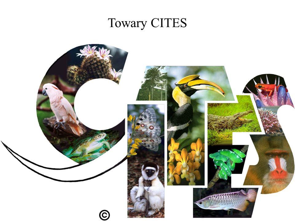 Towary CITES