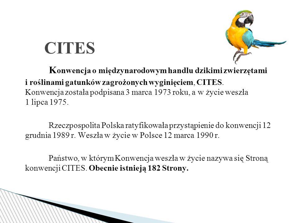 K onwencja o międzynarodowym handlu dzikimi zwierzętami i roślinami gatunków zagrożonych wyginięciem, CITES.