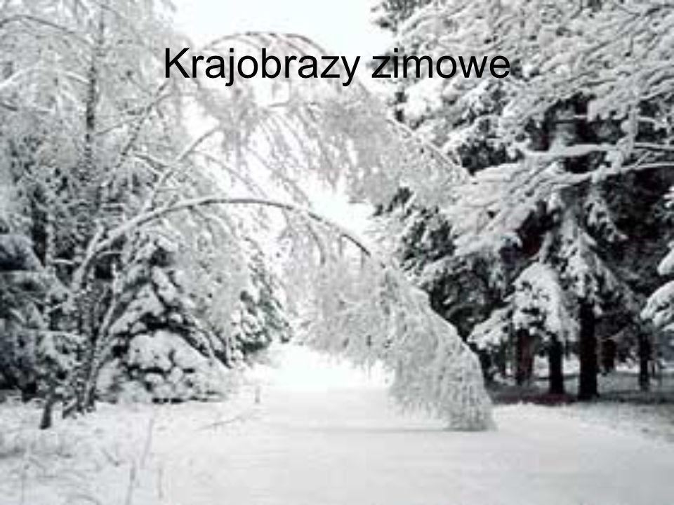 Krajobrazy zimowe