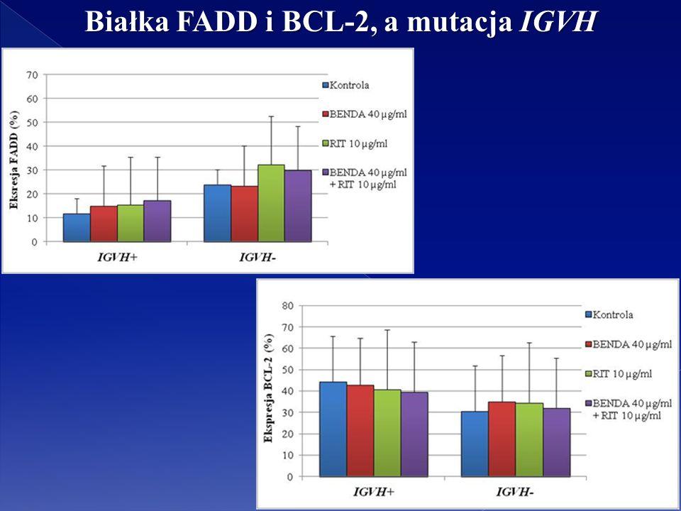 Białka FADD i BCL-2, a mutacja IGVH