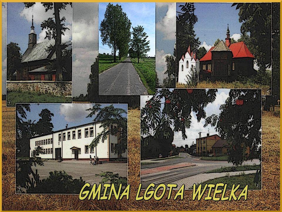 Gmina Lgota Wielka na tle powiatu radomszczańskiego Źródło: www.lodzkie.pl Gmina Lgota Wielka na tle powiatu radomszczańskiego Źródło: www.lodzkie.pl www.lodzkie.pl