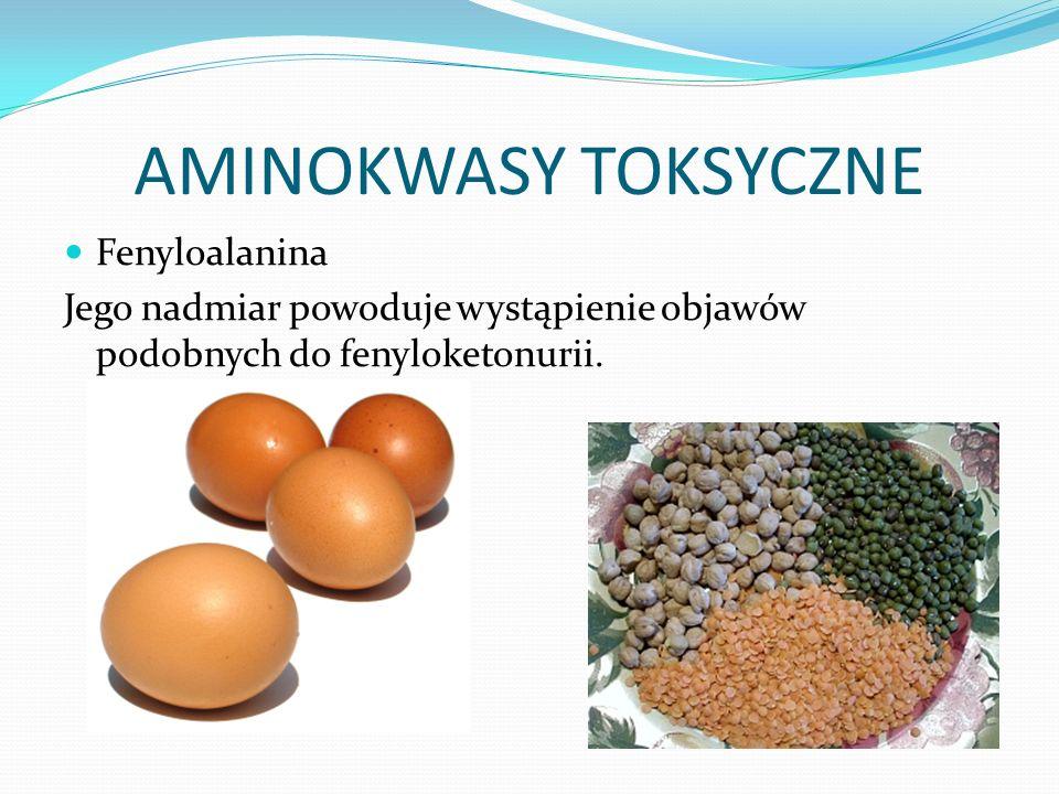 AMINOKWASY TOKSYCZNE Fenyloalanina Jego nadmiar powoduje wystąpienie objawów podobnych do fenyloketonurii.