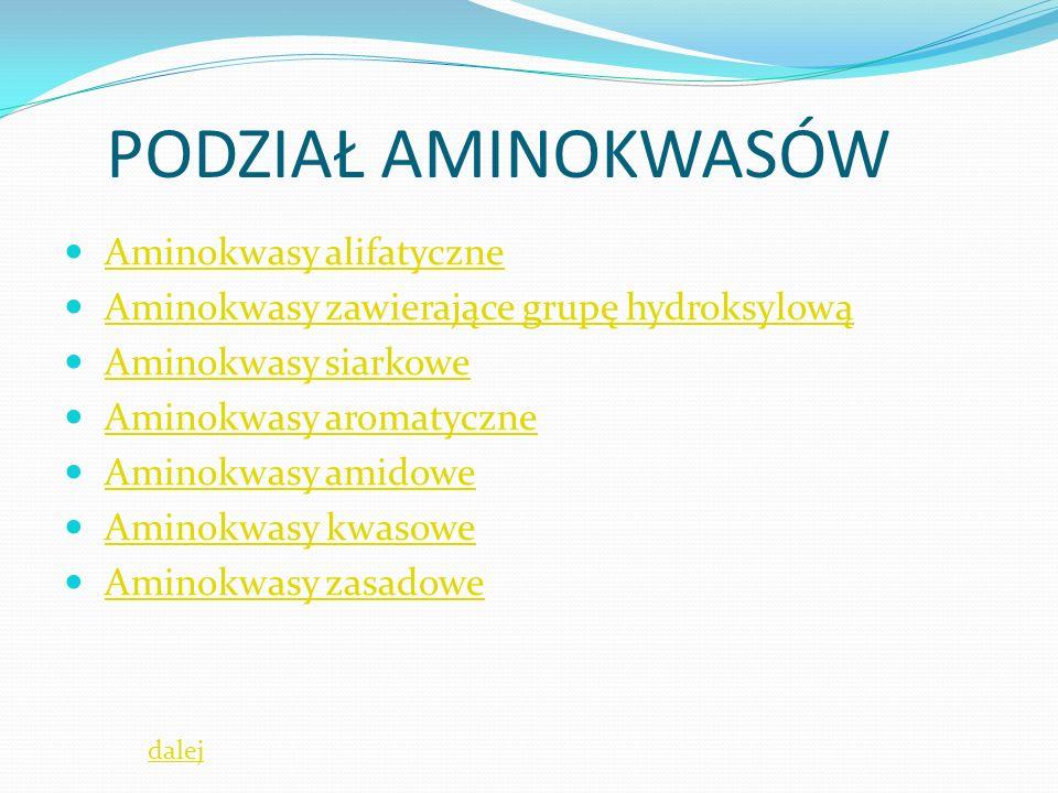 PODZIAŁ AMINOKWASÓW Aminokwasy alifatyczne Aminokwasy zawierające grupę hydroksylową Aminokwasy siarkowe Aminokwasy aromatyczne Aminokwasy amidowe Aminokwasy kwasowe Aminokwasy zasadowe dalej