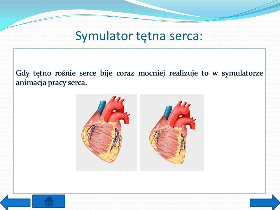 Symulator tętna serca: