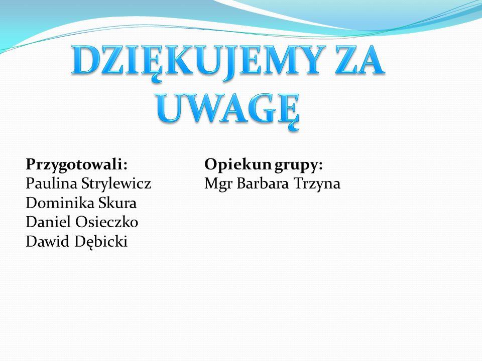 Przygotowali: Paulina Strylewicz Dominika Skura Daniel Osieczko Dawid Dębicki Opiekun grupy: Mgr Barbara Trzyna