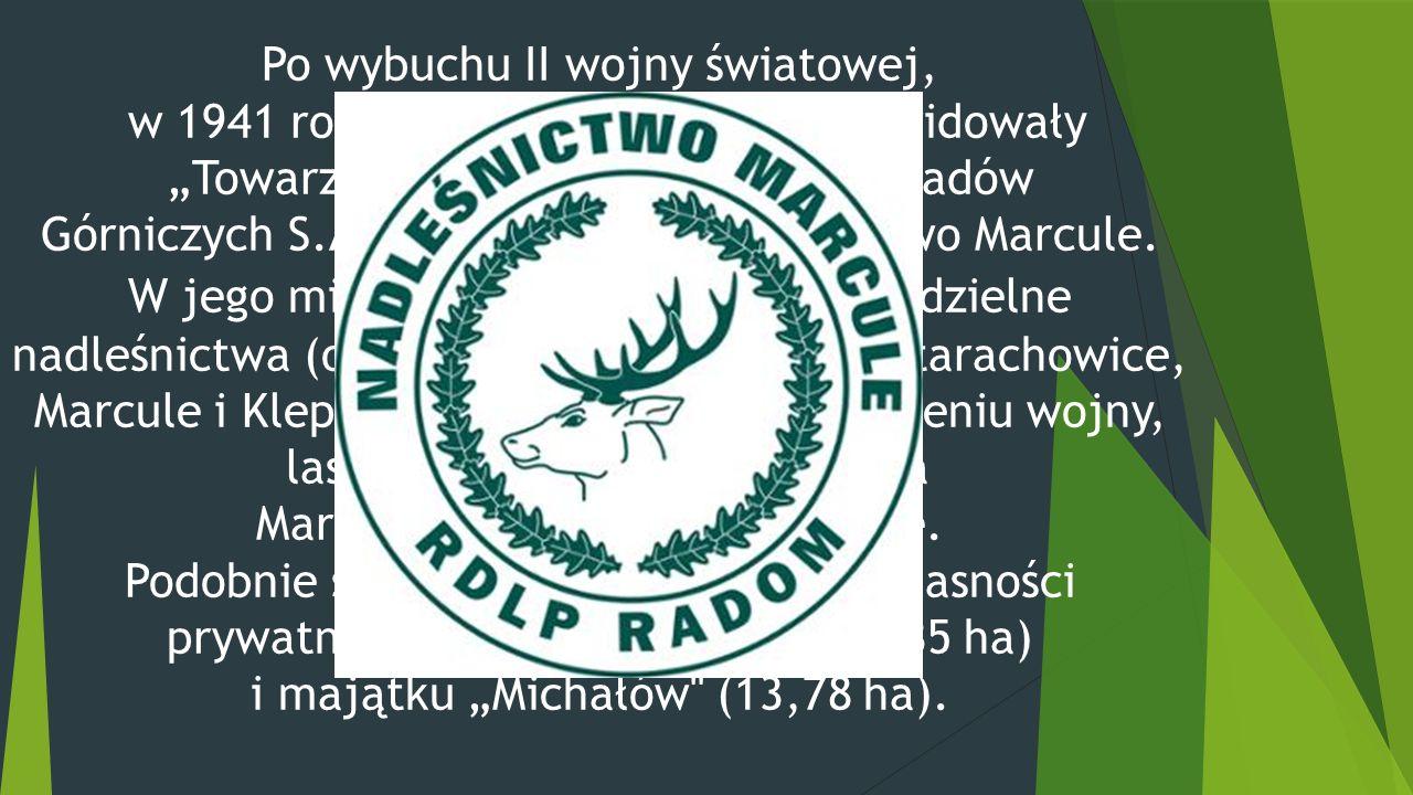 """Po wybuchu II wojny światowej, w 1941 roku władze okupacyjne zlikwidowały """"Towarzystwo Starachowickich Zakładów Górniczych S.A. oraz Główne Nadleśnictwo Marcule."""