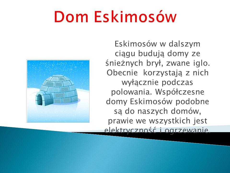 Eskimosów w dalszym ciągu budują domy ze śnieżnych brył, zwane iglo. Obecnie korzystają z nich wyłącznie podczas polowania. Współczesne domy Eskimosów