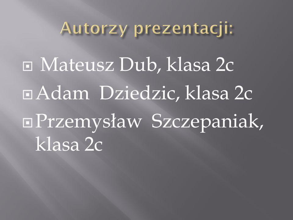  Mateusz Dub, klasa 2c  Adam Dziedzic, klasa 2c  Przemysław Szczepaniak, klasa 2c
