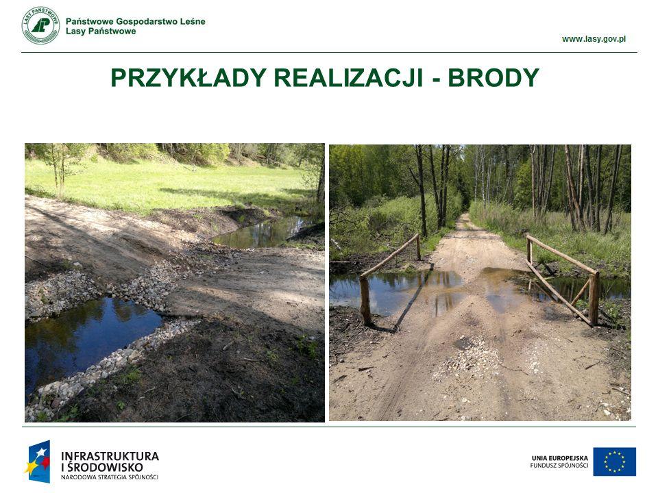 www.ckps.lasy.gov.pl PRZYKŁADY REALIZACJI - BRODY