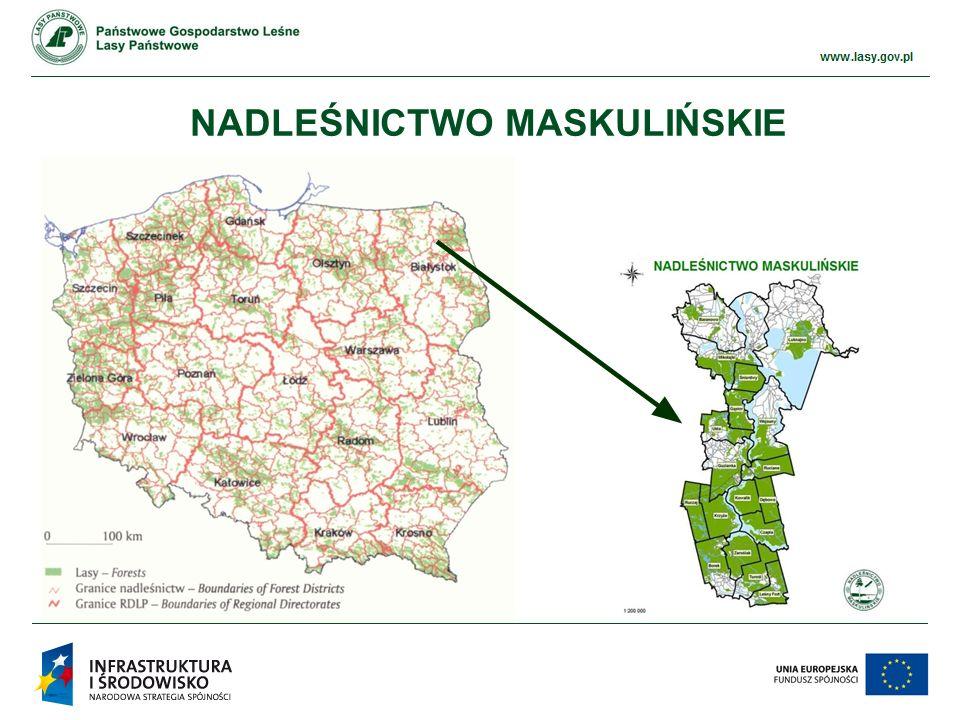 www.ckps.lasy.gov.pl PRZYKŁADY REALIZACJI - PRZEPUSTY