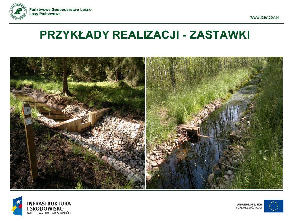 www.ckps.lasy.gov.pl 3) Bród (21 szt.) Wykonany w postaci narzutów kamiennych w palisadach faszynowych, na geowłókninie.