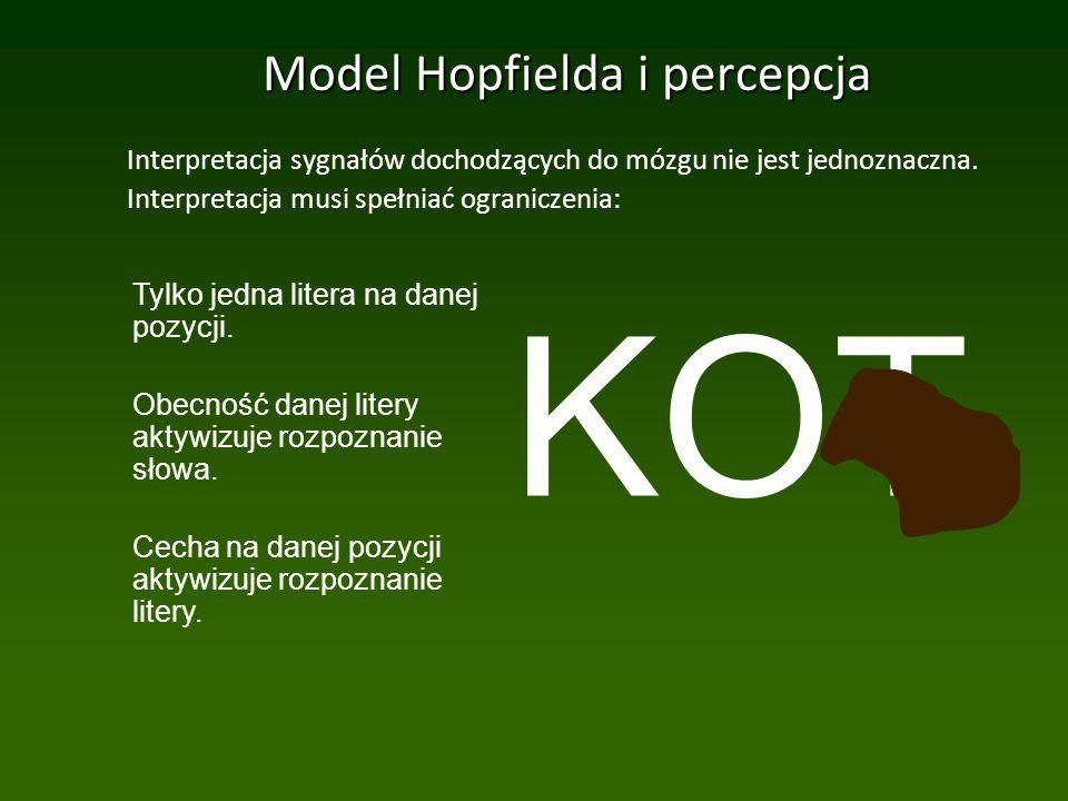 Model Hopfielda i percepcja Interpretacja sygnałów dochodzących do mózgu nie jest jednoznaczna.