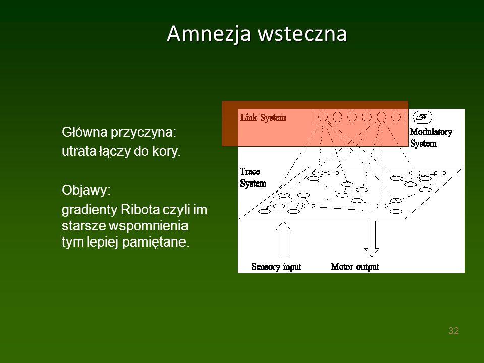 32 Amnezja wsteczna Główna przyczyna: utrata łączy do kory.