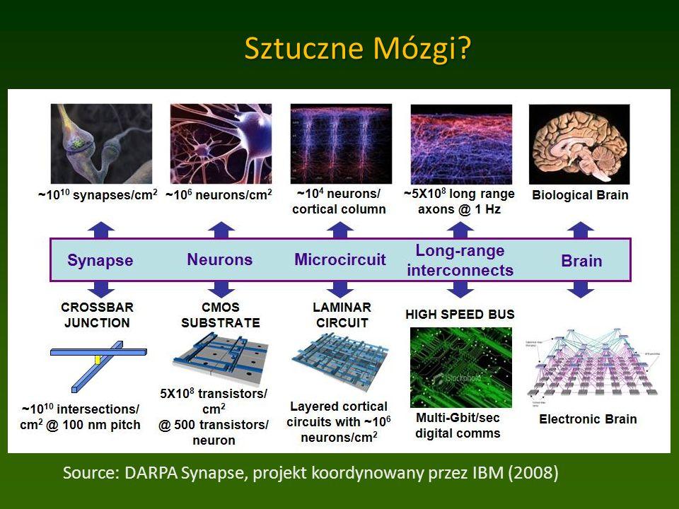 Sztuczne Mózgi Source: DARPA Synapse, projekt koordynowany przez IBM (2008)