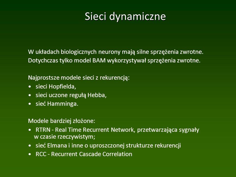 Sieci dynamiczne W układach biologicznych neurony mają silne sprzężenia zwrotne.
